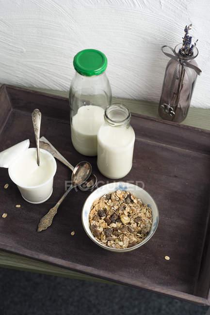Дерев'яні лоток з чаші гранола, пляшок молока і Кубок натурального йогурту — стокове фото