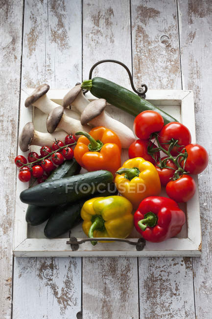 Different fresh vegetables on wooden tray on shabby wood — Stock Photo