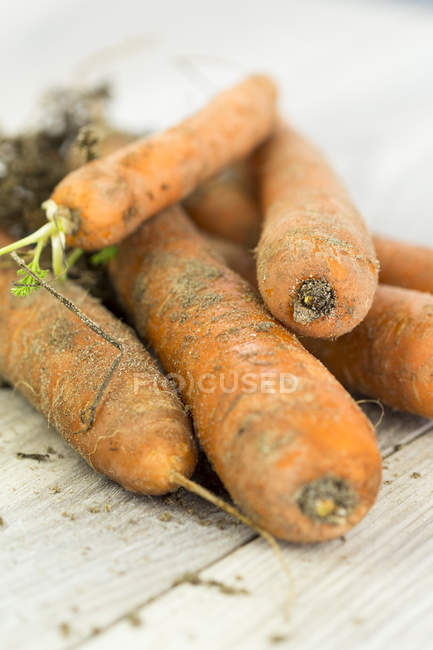 Organic carrots in heap — Stock Photo