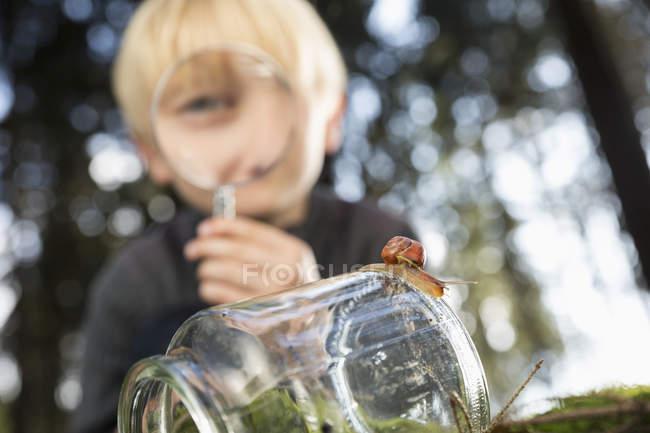 Улитка на стекле с маленьким мальчиком, смотрящим через лупу на заднем плане — стоковое фото