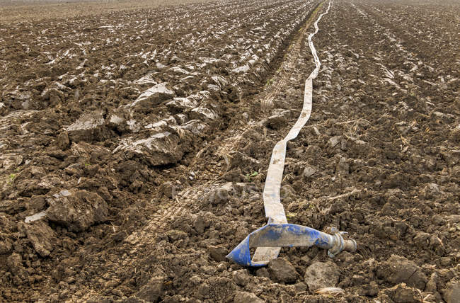 Irrigation hose lying on field — Stock Photo