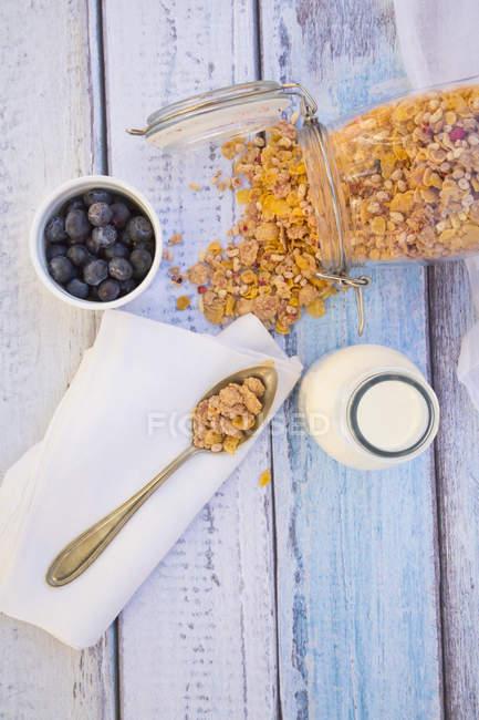 Draufsicht der glutenfrei-Müsli mit Heidelbeeren — Stockfoto