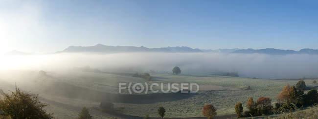 Allemagne, Haute Bavière, Pfaffenwinkel, brouillard automnal près d'Aidling, Panorama — Photo de stock
