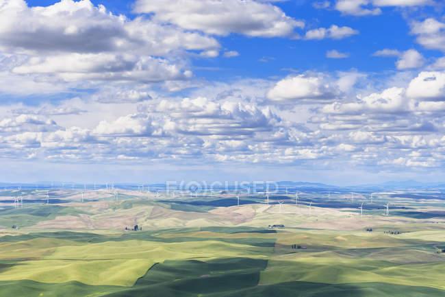 USA, Idaho, Palouse, Parc éolien et champs de céréales — Photo de stock