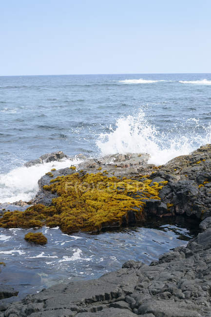 США, Гаваї, Великому острові, Pahala, бурхливі гвинтоподібний вал води бризки на скелі на набережній — стокове фото
