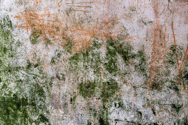 Áustria, Eferding, parede de castelo ruína Schaunberg ao ar livre — Fotografia de Stock
