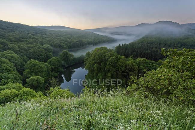 Austria, Alta Austria, Waldviertel, Parque Nacional del Valle de Thaya, Vista al río Thaya - foto de stock