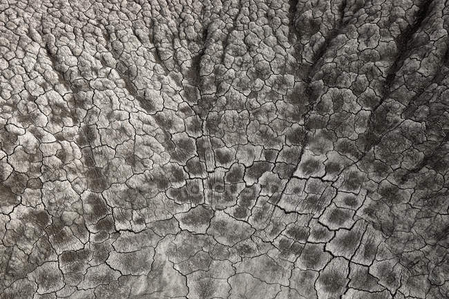 Vista do solo seco durante o dia — Fotografia de Stock