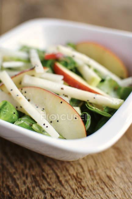 Баранина магістра салату, кольрабі і apple скибочками на Мінті Мак протруювання насіння в миску білої глини — стокове фото