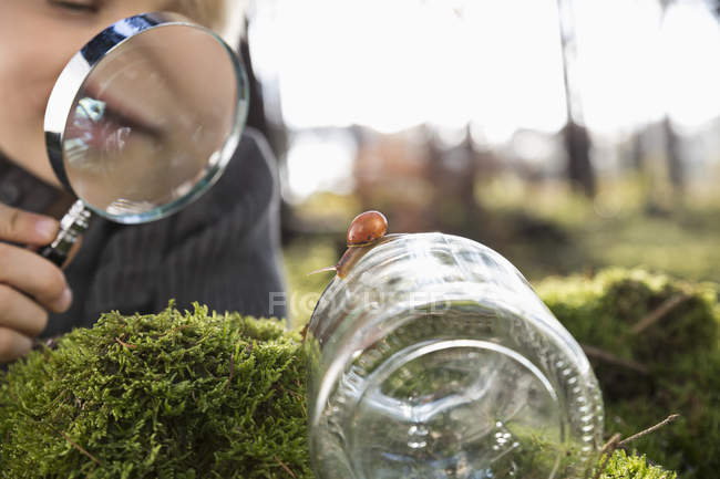 Little boy watching snail with magnifying glass in a forest — Stock Photo
