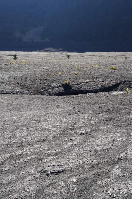 EUA, Hawaii, ilha grande, Parque Nacional dos vulcões, solo da cratera Kilauea Iki — Fotografia de Stock