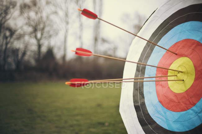 Стрелки, попадающие в цель на поле на размытом фоне — стоковое фото