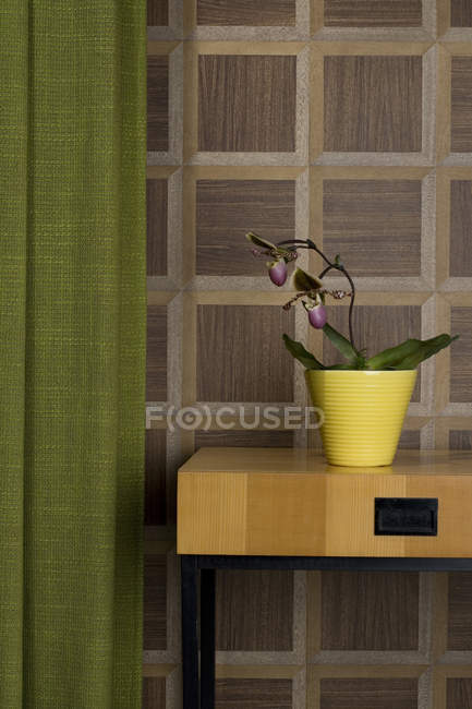 Sideboard mit eingemachten Orchidee und Vorhang vor der hölzernen Wandverkleidung — Stockfoto