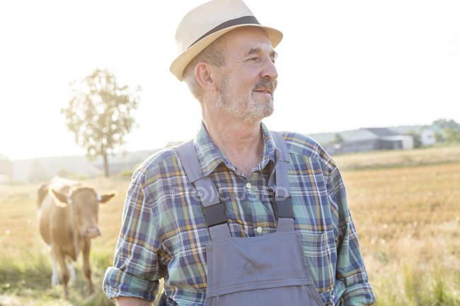 Усміхаючись фермер з коровою у фоновому режимі — стокове фото