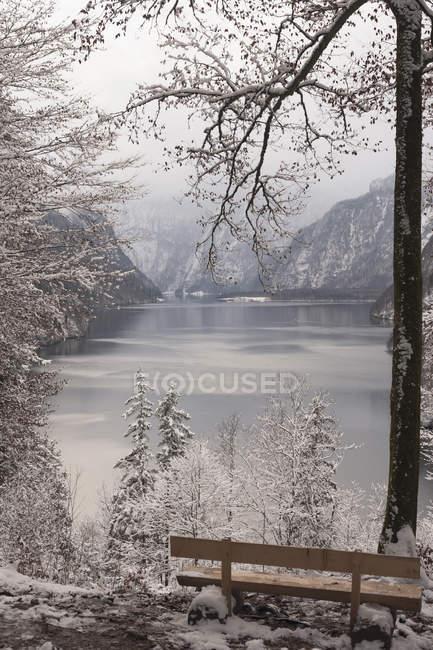Germania, Baviera, Berchtesgadener Land, Lago Koenigssee in inverno — Foto stock