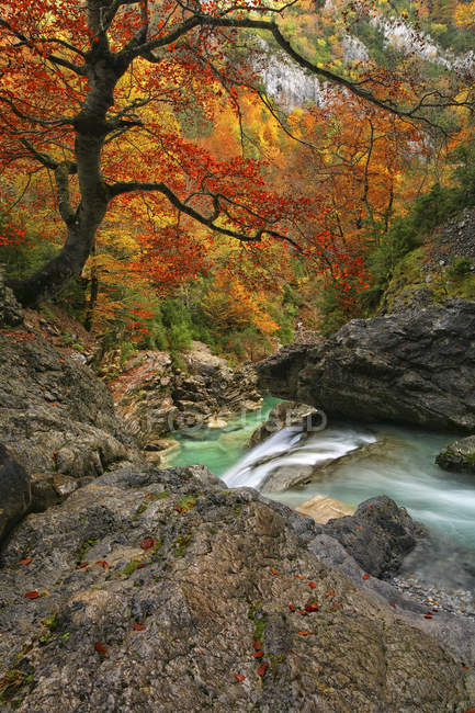 Scenic view of river Anisclo at daytime, Ordesa National Park, Spain — Stock Photo