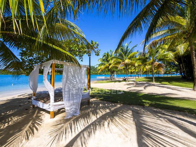 Ямайка, Порт-Антонио, Эррол Флинн Марина, шезлонгом под пальмы на пляже — стоковое фото