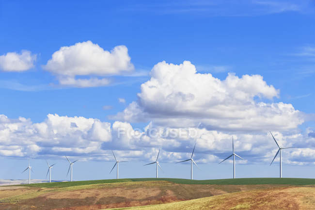 USA, Idaho, Palouse, Wind park on grain fields and cloudy sky — Stock Photo