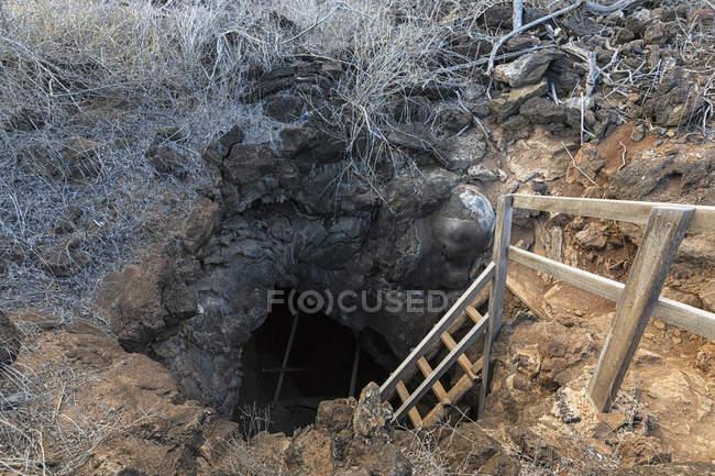 Ecuador, Galapagos Islands, Floreana, Entrance of lava tunnel — Stock Photo
