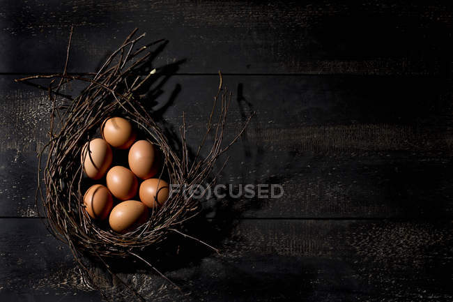 Brown Easter eggs in nest on dark wooden background — Stock Photo