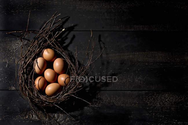 Oeufs de Pâques bruns dans le nid sur fond de bois foncé — Photo de stock