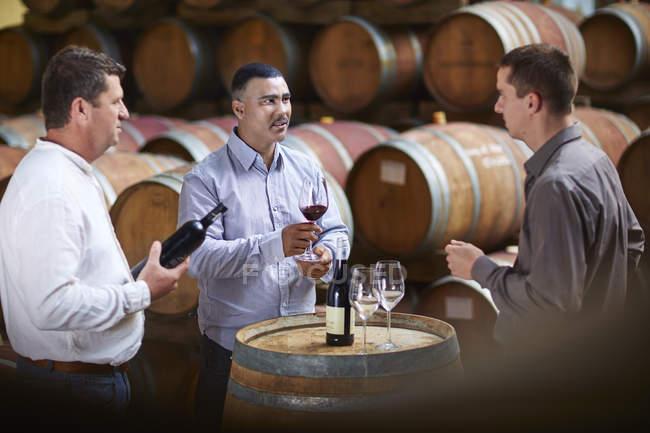 Winzer verkosten Wein im Weinkeller — Stockfoto