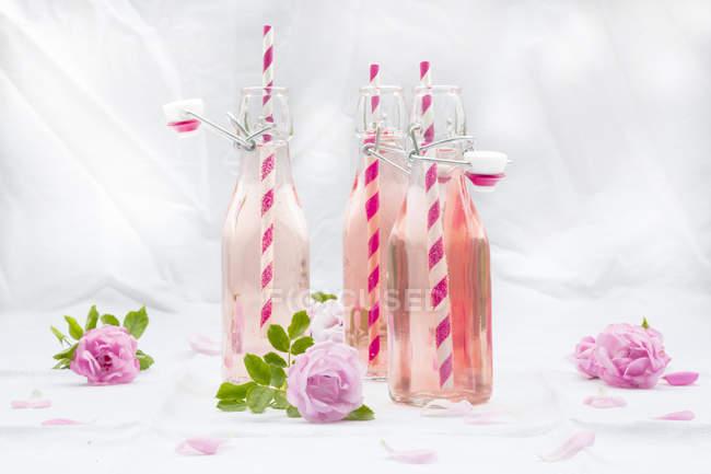 Limonada de rosa caseira em garrafas na superfície branca com flores — Fotografia de Stock