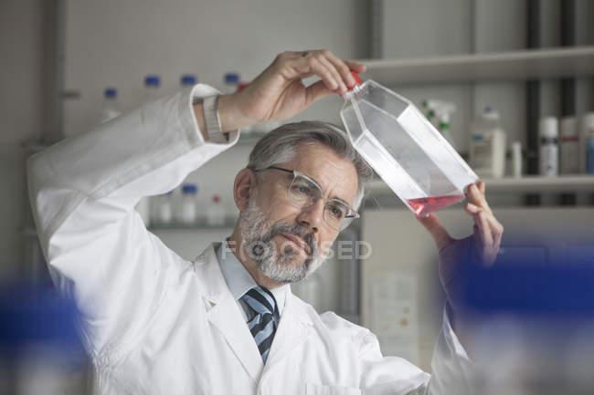Scientist examining liquid in laboratory — Stock Photo