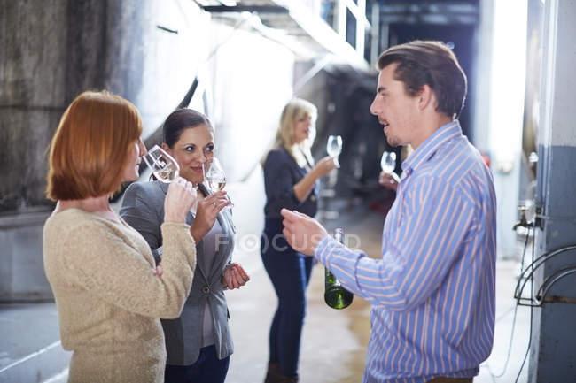 Dégustation de vin à l'atelier — Photo de stock