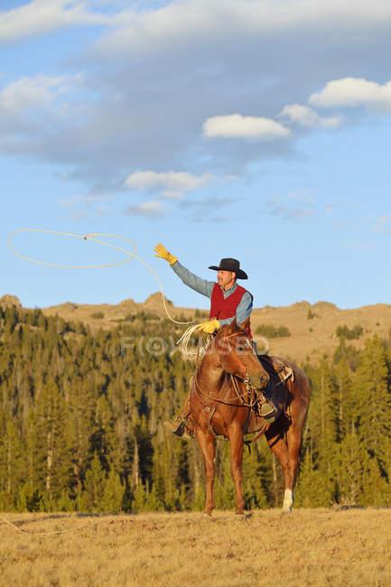 Мальчик, сидящий на лошади — стоковое фото
