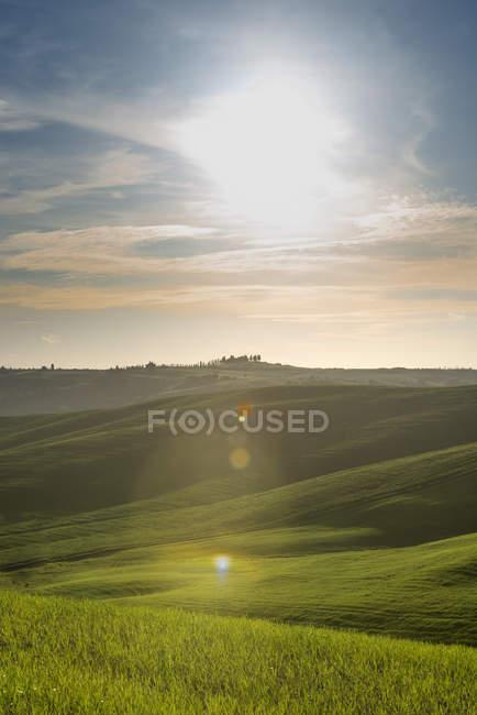 Italia, Toscana, Val d'Orcia, paesaggio ondulato retroilluminato — Foto stock