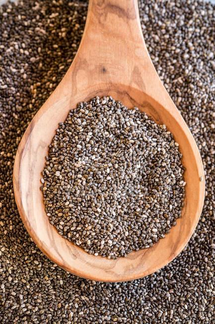 Дерев'яною ложкою з насіння чіа, крупним планом — стокове фото