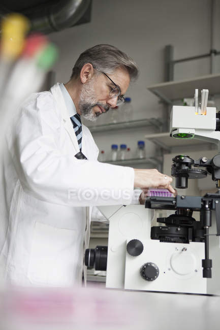 Scientist in laboratory working at microscope — Stock Photo