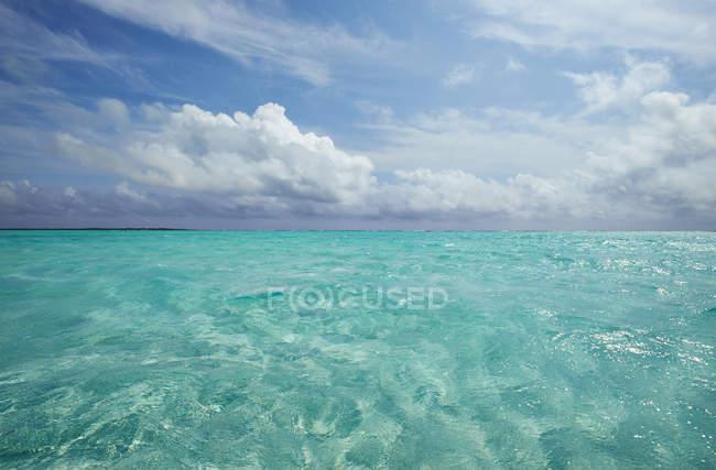 Caraïbes, Antilles néerlandaises, Bonaire, paysage marin à Lac Bay — Photo de stock