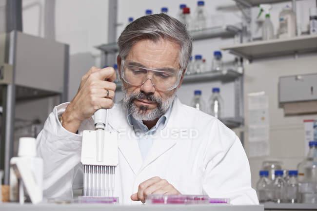 Scientist pipetting in laboratory — Stock Photo