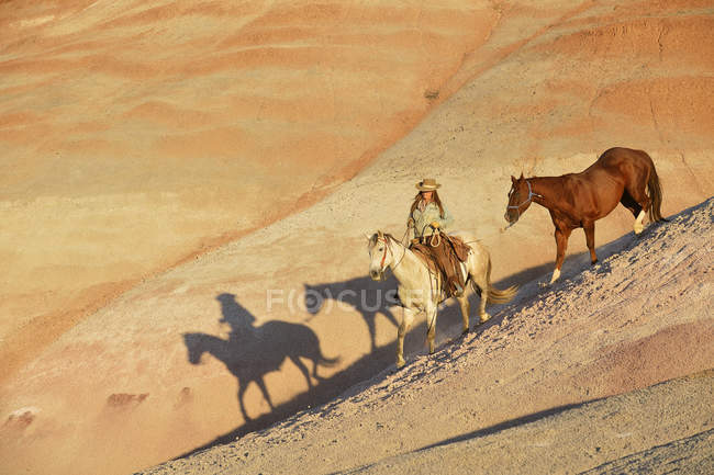Соединенные Штаты Америки, Вайоминг, ковбойша с двумя лошадьми в пустошах — стоковое фото
