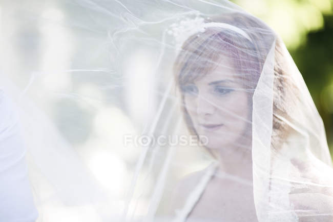 Bride covered with veil — Stock Photo