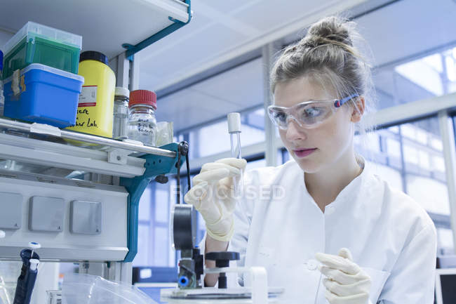 Biologist in laboratory looking at test tube — Stock Photo