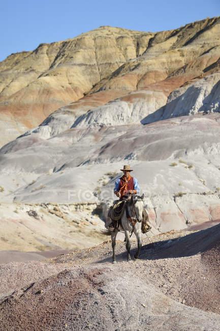 Usa, wyoming, große hornberge, reiten cowboy — Stockfoto