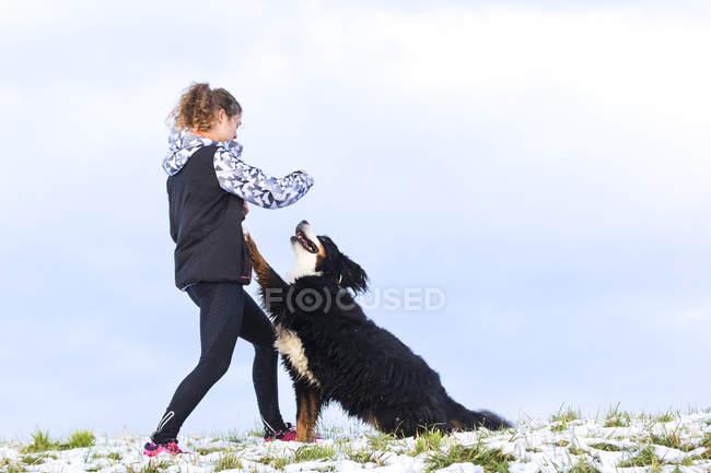 Молодая женщина, играя с ее Святой Бернард на заснеженной поляне — стоковое фото