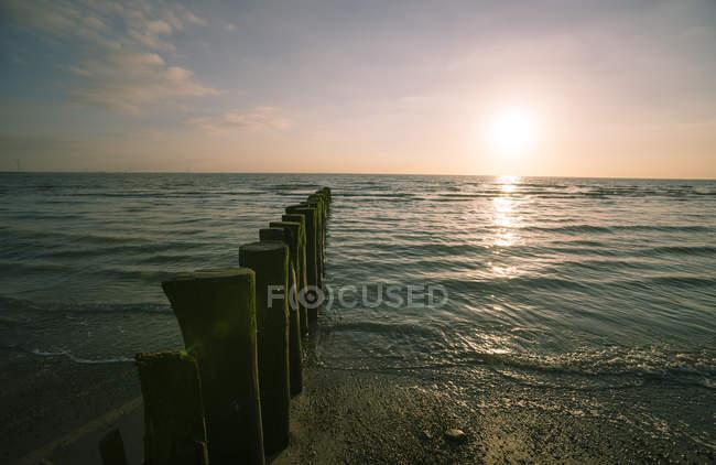 Plage de pays-bas, Westenschouwen, au coucher du soleil — Photo de stock