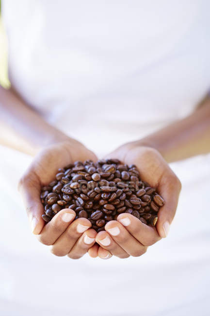 Female hands holding coffee beans — Stock Photo