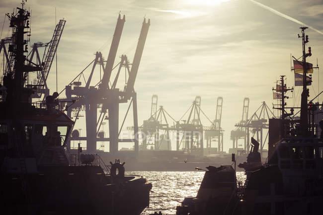 Germany, Hamburg, Port of Hamburg, Harbour cranes and towboats at sunset — Stock Photo