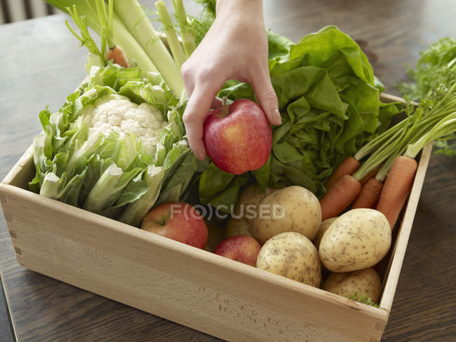 Female Hand taking apple from crate with fresh fruits and vegetables — Stock Photo
