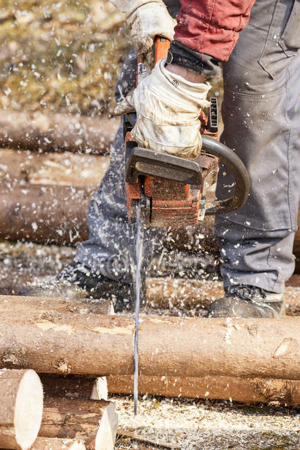 Logger sawing tree trunk with motor saw — Stock Photo