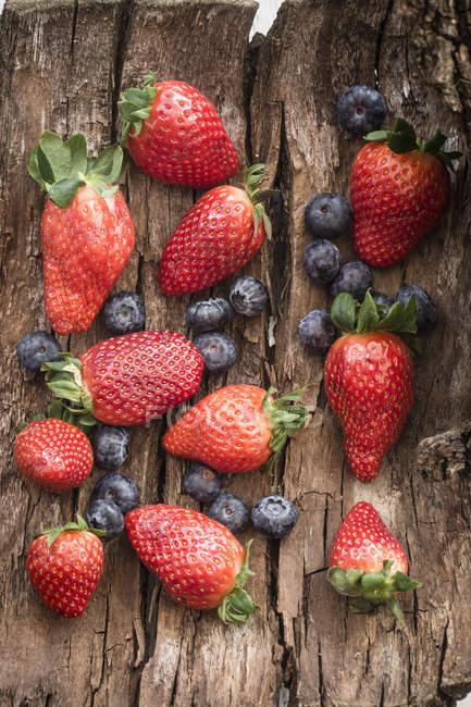 Fragole fresche raccolte e mirtilli — Foto stock