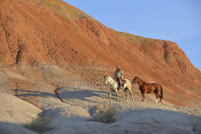 Пастушка с двух лошадей в бесплодные земли — стоковое фото