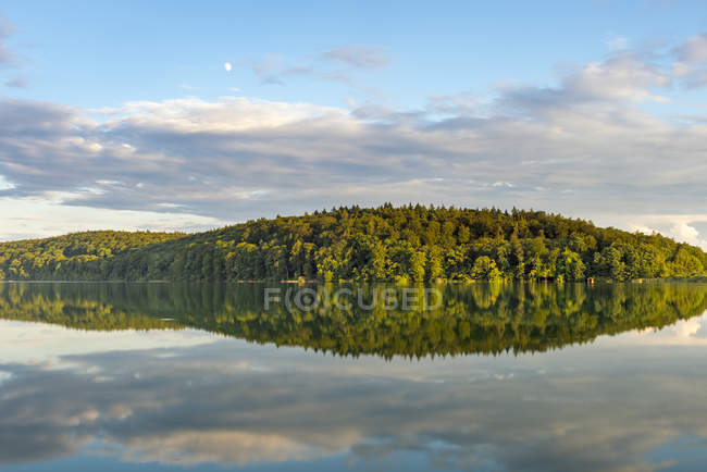 Germany, Lake Constance, Mindelsee forest reflecting on water surface — Stock Photo