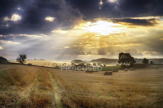 Reino Unido, Escocia, East Lothian, campos cosechados y nubes - foto de stock