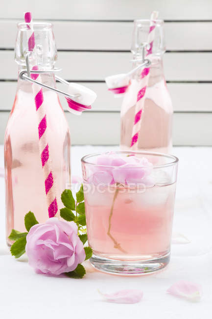 Limonada de rosa caseira em garrafas na superfície branca com flor e vidro — Fotografia de Stock